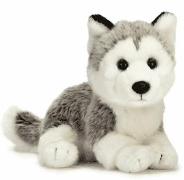 Husky - Teddypost.se